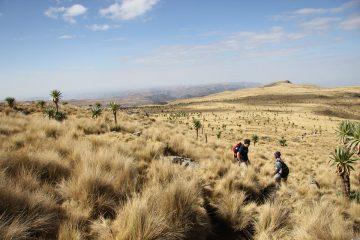 L'Éthiopie, une adresse idéale pour des moments d'aventures